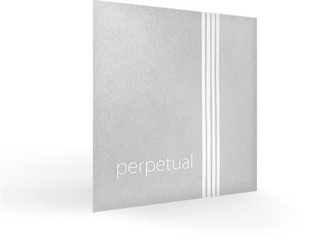 vln_perpetual_persp72sf4zzPRC3UXZL