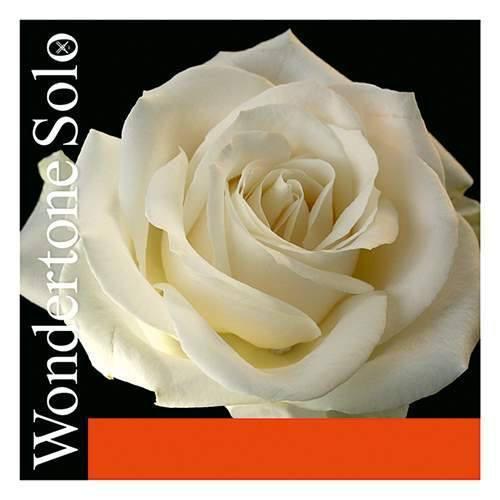 Pirastro Wondertone Solo D Violinsaite 4/4 Silber