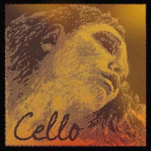 Pirastro Evah Pirazzi Gold Cellosaiten Satz 4/4 Größe