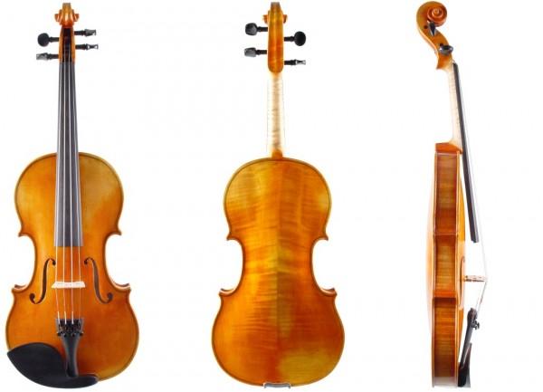 Geige-Gerd-Mallon-Vogtland-1