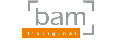 BAM Cases
